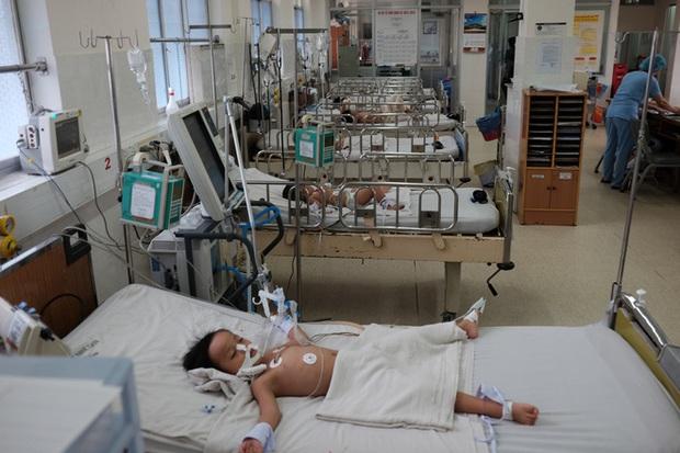 TP.HCM: Đã có ba trẻ tử vong vì sốt xuất huyết - Ảnh 1.