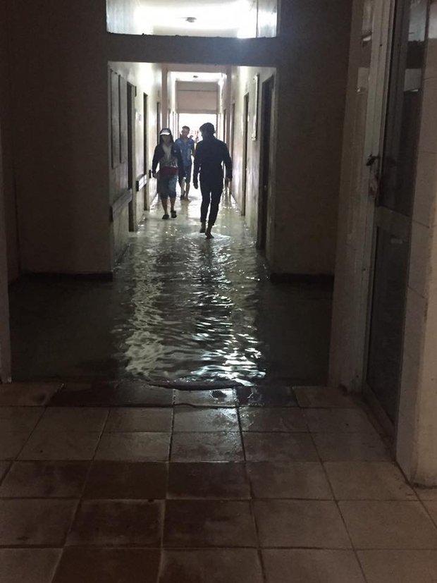 Clip: Người dân đổ xô ra đoạn đường ngập để bắt cá giữa tâm bão số 4 - Ảnh 4.