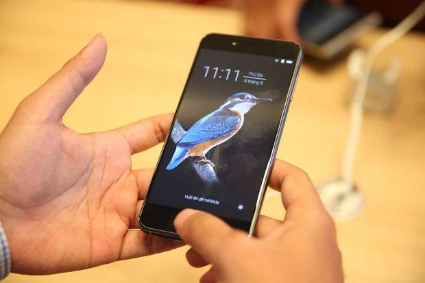 Vì sao chim gõ kiến xuất hiện trên BPhone 2017, lý do đằng sau cho thấy BKAV tinh tế chẳng kém Apple - Ảnh 3.