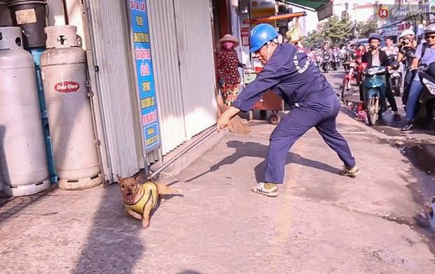Trưởng trạm Phòng chống dịch và Kiểm dịch động vật: Có người cầm dao hăm dọa, rượt đuổi anh em trong Đội săn bắt để đòi lại chó - Ảnh 3.