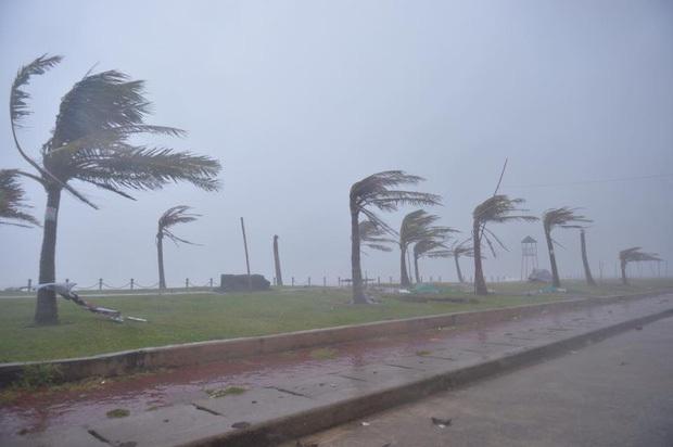 Bão số 10 đổ bộ vào đất liền, vùng tâm bão mưa to, gió giật mạnh - Ảnh 9.