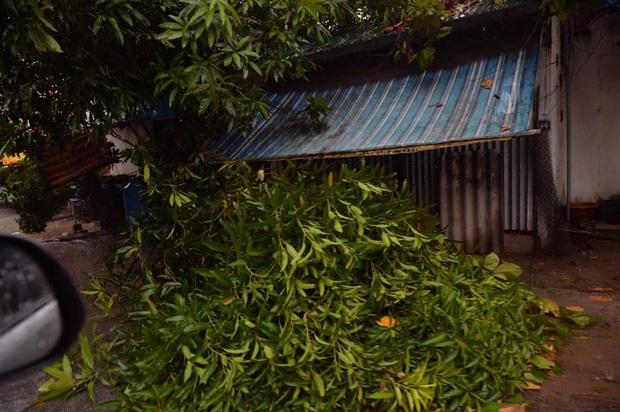 Bão số 10 đổ bộ vào đất liền, vùng tâm bão mưa to, gió giật mạnh - Ảnh 10.