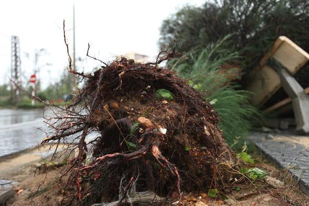Chùm ảnh: Bão số 10 chưa qua, các tỉnh miền Trung đã tan hoang, ngập lụt - Ảnh 16.