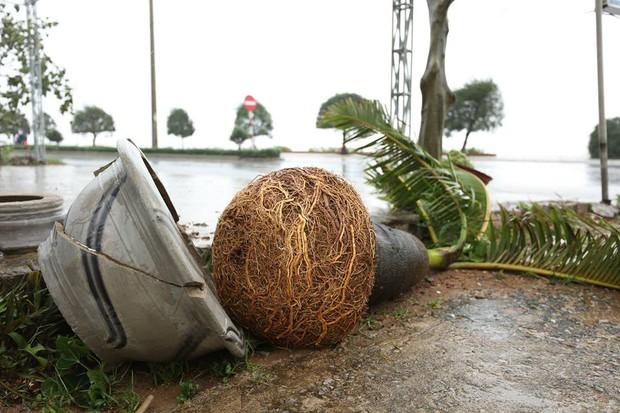 Chùm ảnh: Bão số 10 chưa qua, các tỉnh miền Trung đã tan hoang, ngập lụt - Ảnh 18.