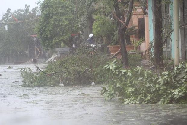Chùm ảnh: Bão số 10 chưa qua, các tỉnh miền Trung đã tan hoang, ngập lụt - Ảnh 3.