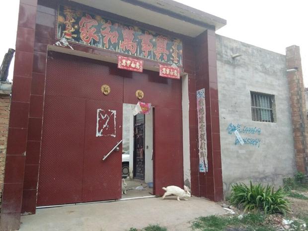 Giải cứu cô gái sau 3 năm bị bán sang Trung Quốc - Ảnh 3.