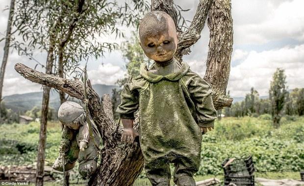 Cơn ác mộng Isla de las Munecas: Hòn đảo với hàng nghìn con búp bê kinh dị được treo lủng lẳng trên cây - Ảnh 4.