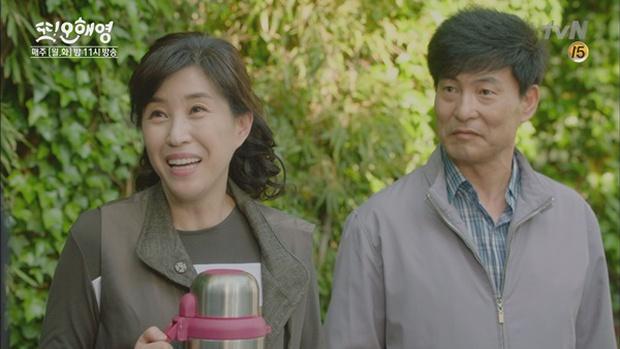 Loạt gương mặt thân quen như người nhà của đài tvN - Ảnh 4.