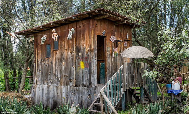 Cơn ác mộng Isla de las Munecas: Hòn đảo với hàng nghìn con búp bê kinh dị được treo lủng lẳng trên cây - Ảnh 12.