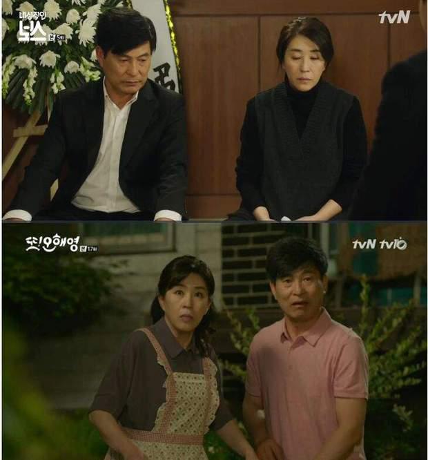 Loạt gương mặt thân quen như người nhà của đài tvN - Ảnh 5.