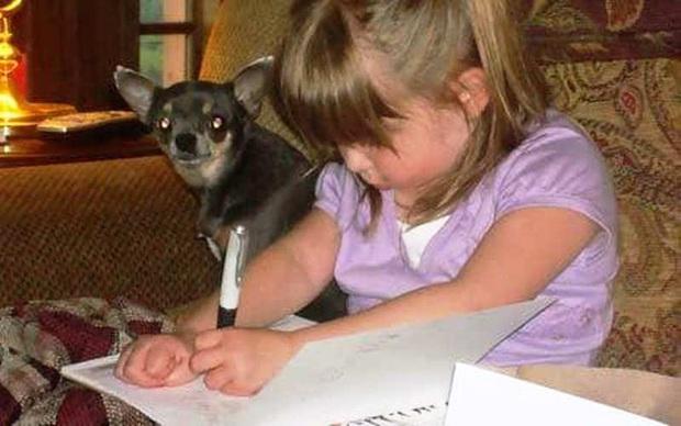 Tang lễ con gái vừa xong, bố mẹ đau đớn phát hiện khắp nhà có những mẩu giấy nhỏ với lời nhắn của con - Ảnh 6.