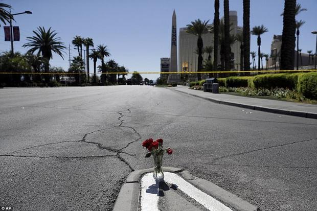 Cảnh tượng đau lòng sau vụ thảm sát đẫm máu nhất nước Mỹ: Túi đựng thi thể chồng chất, máu vương vãi khắp nơi - Ảnh 9.