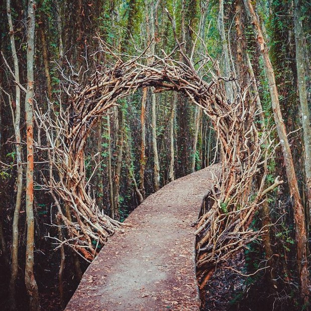 Thu sang, tạm gác lá vàng mà hãy thử về với miền Tây đón mùa nước nổi - Ảnh 13.