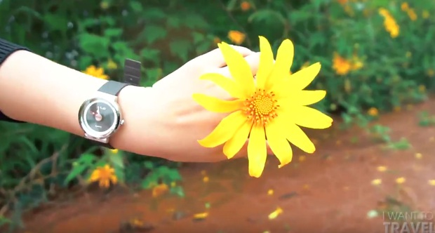 Suốt ngày đi Thái, đi Hàn, bạn có đang bỏ lỡ một Việt Nam đẹp xuất sắc như trong clip? - Ảnh 4.