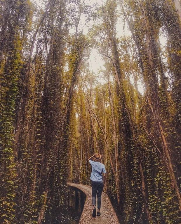 Thu sang, tạm gác lá vàng mà hãy thử về với miền Tây đón mùa nước nổi - Ảnh 19.