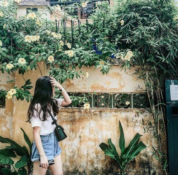 6 quán cafe ở khu hồ Tây luôn nằm trong top check-in của giới trẻ Hà Nội unnamed 30 1495628991160