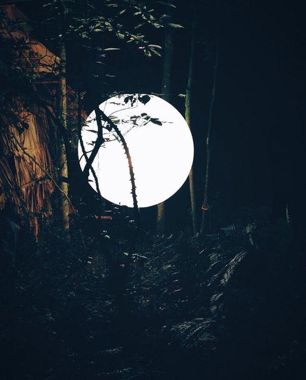 5 công trình bị bỏ hoang tại Việt Nam, muốn có những bức ảnh kì bí hết cả hồn thì nhất định phải đến! - Ảnh 43.