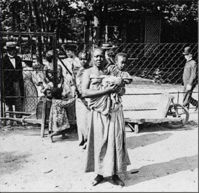 Bức ảnh bé gái châu Phi đứng trong chuồng: Câu chuyện đau lòng về những vườn thú người tại châu Âu - Ảnh 3.