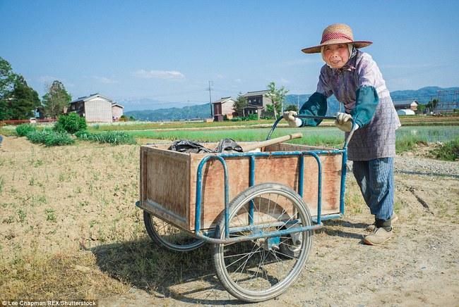 Chùm ảnh cho thấy tinh thần làm việc đáng khâm phục của người cao tuổi Nhật Bản - Ảnh 15.