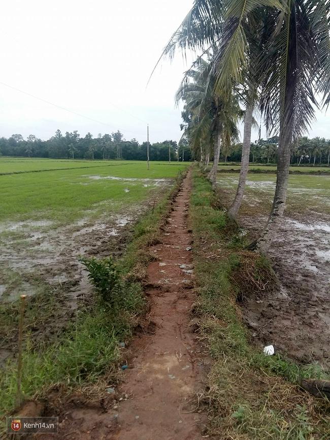 Gia cảnh nhà Tùng Sơn: Ở nhà đất, lợp mái lá, vẫn cố cho con 50 nghìn lên Sài Gòn - Ảnh 2.