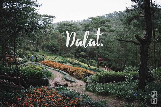 Có một Việt Nam đẹp mê mẩn trong bộ ảnh du lịch của nhóm bạn trẻ... Thái Lan! - Ảnh 3.