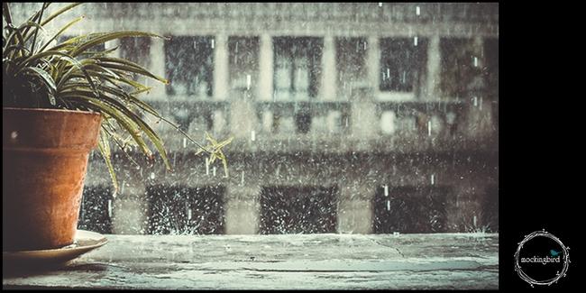 Ngắm mưa ở Sài Gòn, nhất định phải ghé 4 quán cafe này! - Ảnh 20.