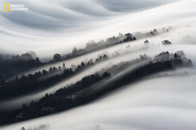 Những bức ảnh đẹp ngỡ ngàng về thế giới tự nhiên trong cuộc thi của Tạp chí National Geographic - Ảnh 4.