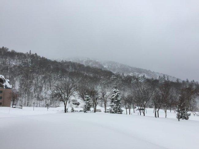 Tuyết rơi dày, hàng trăm du khách Trung Quốc náo loạn sân bay Nhật Bản vì chuyến bay bị hủy - Ảnh 3.
