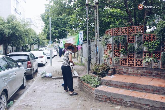 Gặp cậu SV Báo chí - tác giả của 4 vườn hoa mọc lên từ bãi rác ở Hà Nội - Ảnh 7.