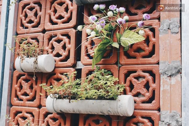 Gặp cậu SV Báo chí - tác giả của 4 vườn hoa mọc lên từ bãi rác ở Hà Nội - Ảnh 6.