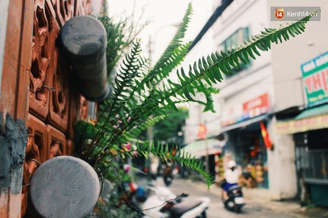 Gặp cậu SV Báo chí - tác giả của 4 vườn hoa mọc lên từ bãi rác ở Hà Nội - Ảnh 14.