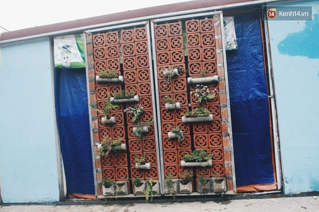 Gặp cậu SV Báo chí - tác giả của 4 vườn hoa mọc lên từ bãi rác ở Hà Nội - Ảnh 12.