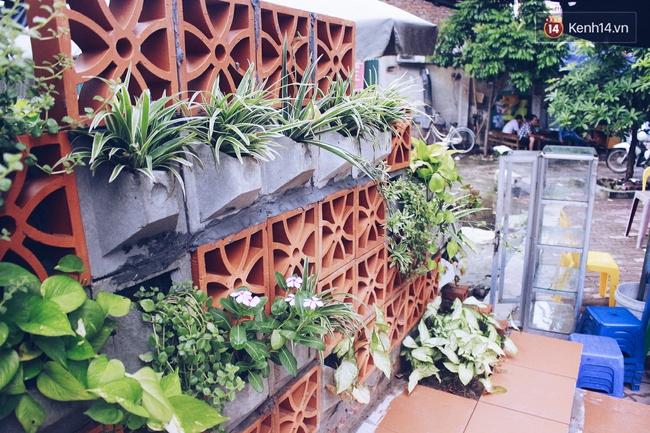 Gặp cậu SV Báo chí - tác giả của 4 vườn hoa mọc lên từ bãi rác ở Hà Nội - Ảnh 5.