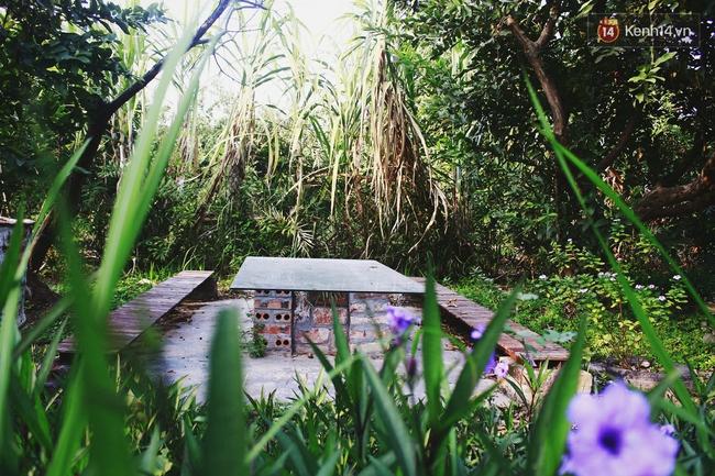 Ngôi nhà đặc biệt xây bằng 8.800 vỏ chai nhựa ở Hà Nội - Ảnh 13.