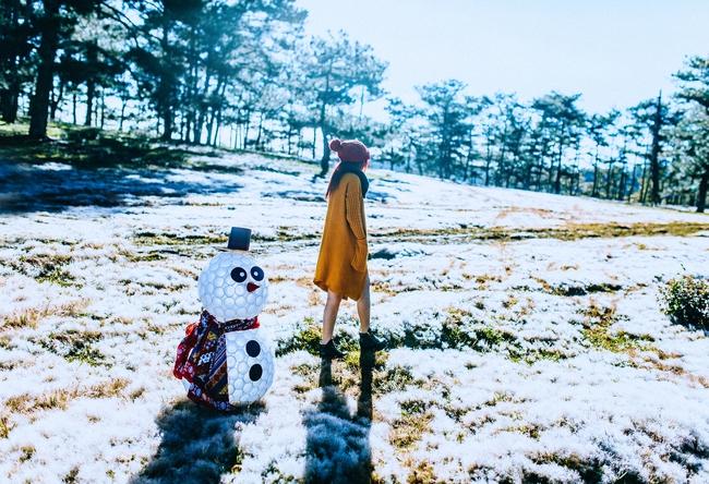 Cánh đồng tuyết đẹp đến ngỡ ngàng ở Đà Lạt - Ảnh 4.