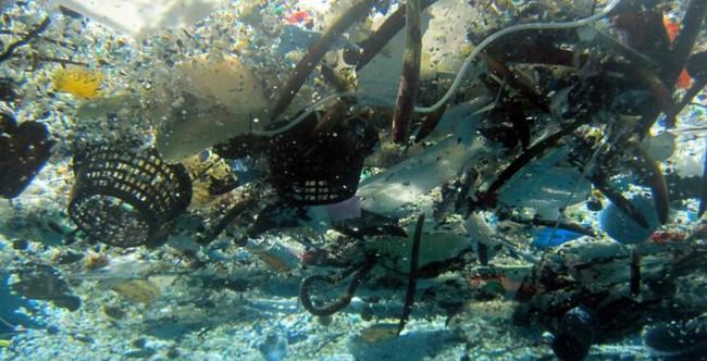 Rùng mình trước hình ảnh những dòng sông đầy rác thải và xác cá chết - Ảnh 20.