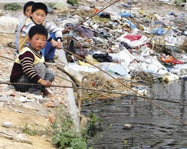 Rùng mình trước hình ảnh những dòng sông đầy rác thải và xác cá chết - Ảnh 16.