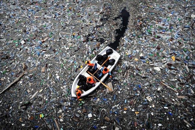 Rùng mình trước hình ảnh những dòng sông đầy rác thải và xác cá chết - Ảnh 25.