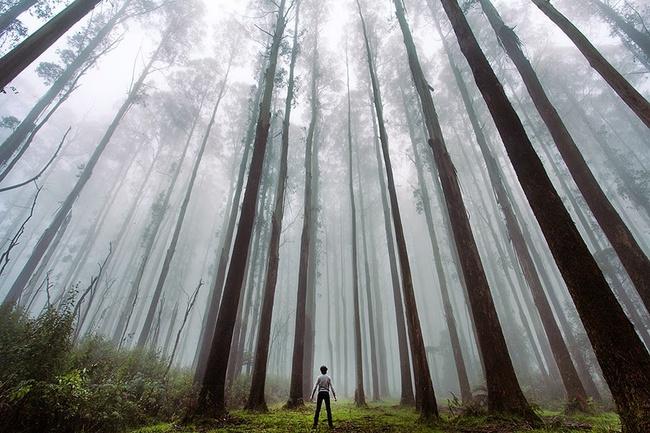 15 bức ảnh lộng lẫy chứng tỏ rằng thế giới của chúng ta to lớn như thế nào - Ảnh 15.