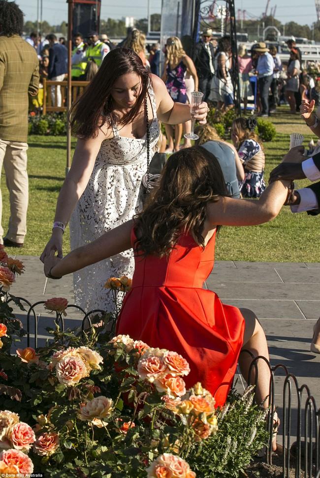 Úc: Cô nàng ăn kẹo bông bỗng nổi như cồn sau khi vô tình lọt vào ống kính nhiếp ảnh gia - Ảnh 4.