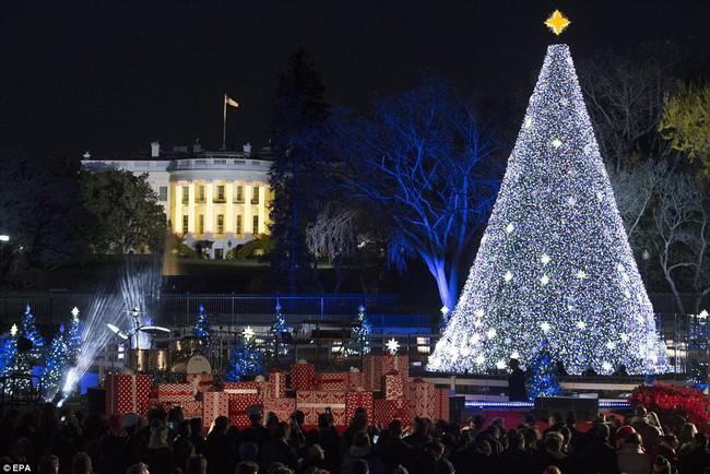 Vậy là lần cuối cùng, gia đình ông Obama thắp cây thông Noel trong mùa giáng sinh tại Nhà Trắng - ảnh 3