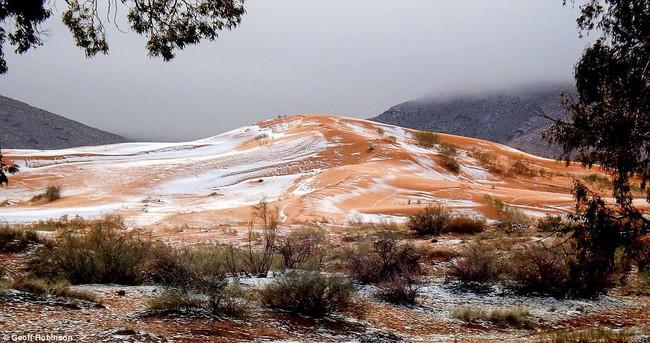 Lần thứ 2 trong lịch sử, sa mạc Sahara có tuyết rơi! - Ảnh 3.