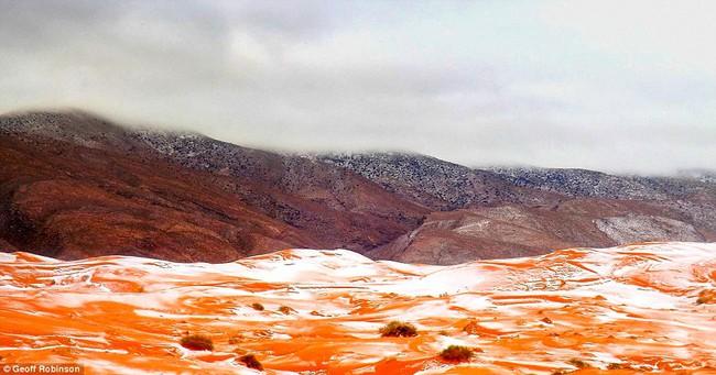 Lần thứ 2 trong lịch sử, sa mạc Sahara có tuyết rơi! - Ảnh 7.