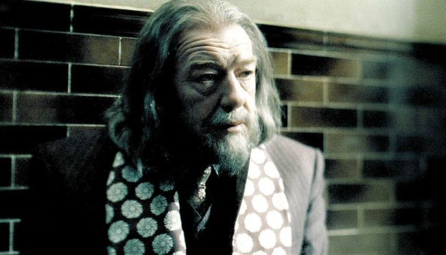Albus Dumbledore sẽ xuất hiện trong Fantastic Beasts and Where to Find Them 2 - Ảnh 1.
