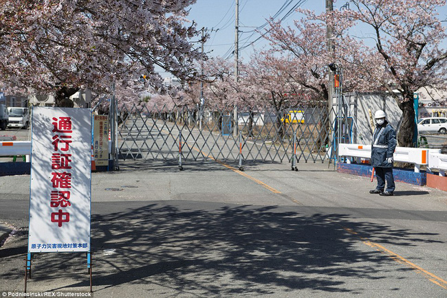 Chùm ảnh: Những bức hình ám ảnh về thị trấn ma sau thảm họa nhà máy hạt nhân Fukushima, Nhật Bản 2011 - Ảnh 5.
