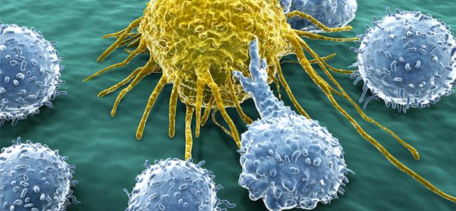 5 bước tiến cực lớn trong cuộc chiến chống ung thư của nhân loại năm 2016 - Ảnh 5.