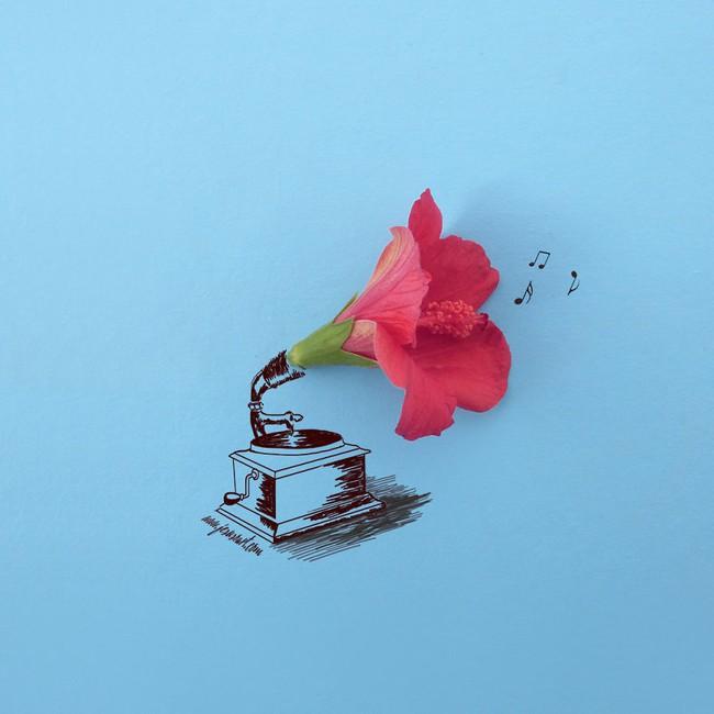 Họa sĩ hô biến cánh hoa xinh đẹp thành tác phẩm nghệ thuật độc đáo - Ảnh 11.