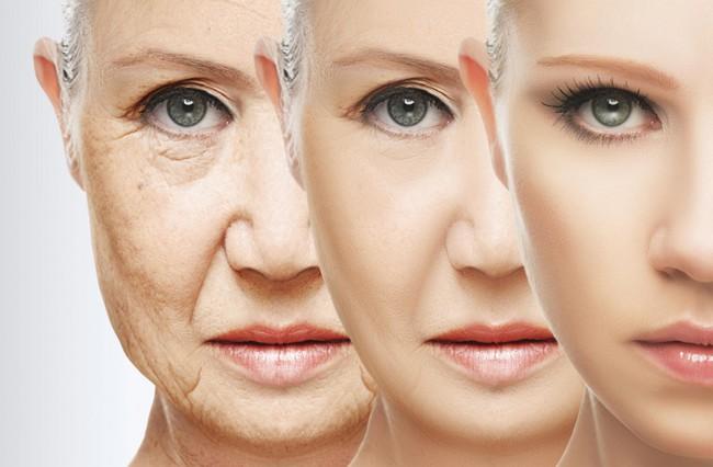 Quá trình lão hóa có thể đảo ngược?