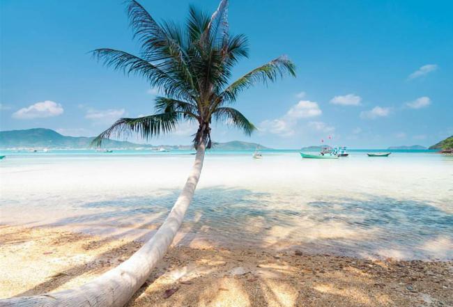 Cần chi đi đâu xa, ở Việt Nam cũng có những vùng biển đẹp không thua gì Maldives! - Ảnh 41.