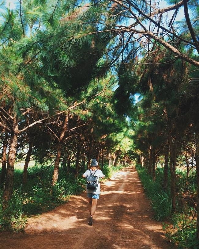 Những nơi chụp ảnh siêu đẹp ở Đà Lạt trong MV của Quang Vinh mà bạn nhất định phải ghé! - Ảnh 10.